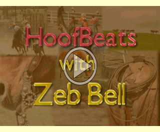 Zeb Bell on HoofBeats